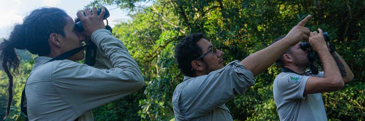 Descubriendo la Fauna del Putumayo