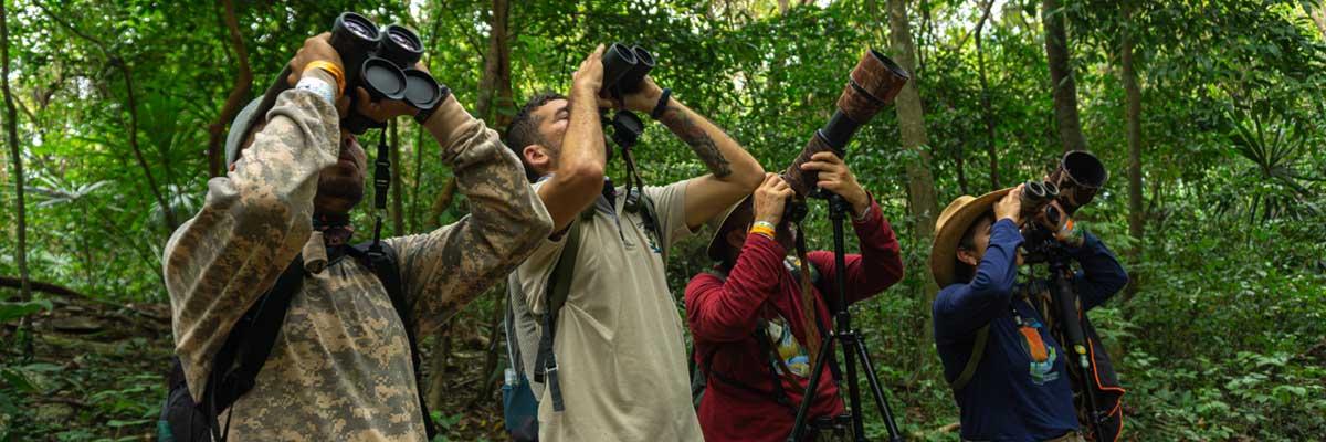 En la Busqueda del Paujil de Pico Azul